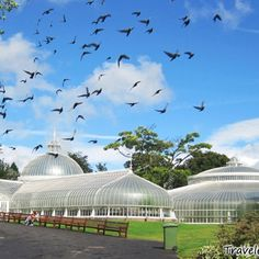 Beauty - Botanical gardens #malmaisongiveaway