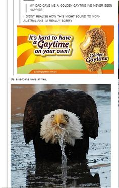 """Hahaha the slogan """"its hard to have a gay time on your own"""" is sung as a kind of jingle.....  #straya (they are also the most delicious things EVER!)"""