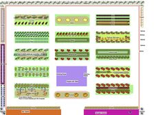 My Vegetable Garden Plan