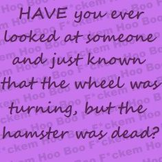 Have you ever looked at someone and just known that the wheel was turning, but the hamster was dead?