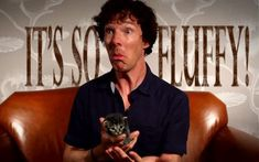 And Benedict holding this tiny kitten is one of the cutest things you're likely to ever see. | 19 Very Important Photos Of Benedict Cumberbatch With Kittens