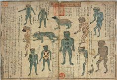 Illustrations of the 12 different types of Kappa, a water spirit who is sometimes known to haunt outhouses, from the 19th century.