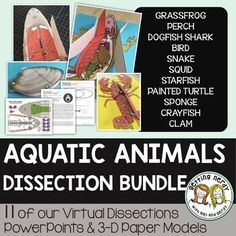 Life science and biology resources for class or homeschool. Engage students with interactive notebooks, paper dissection models, full lessons and more! Science Vocabulary, Science Curriculum, Teaching Science, Science Education, Biology Lessons, Science Lessons, Life Science, Human Body Activities, Steam Activities