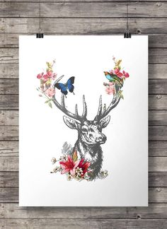 Black and white deer with color