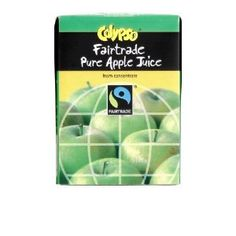 Calypso Fairtrade Pure Apple Juice 200 ml (Pack of 27), perfect for quenching your thirst after a spot of dragon fighting