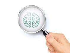 大阪大学ら、脳の全体像を精密な分解能で観察できる新技術を開発
