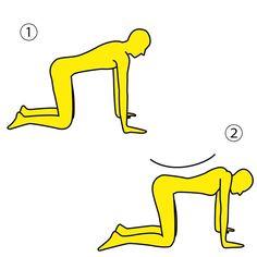 ■やり方 ※画像参照 1.床に四つん這いになります。  ※画像①参照  2.息を吐きながら背中を  反っていき、肩甲骨を  天井に向かって突き上げる  ように寄せていきます。  ※画像②参照  3.肩甲骨をしっかりと寄せた  状態で10数えたら、  リラックスして四つん這いに  戻ります。  これを10回やりましょう。  ■POINT 両腕をつっぱり、肩甲骨を しっかりと寄せましょう。