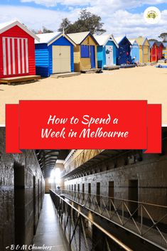 If you are spending a week in Melbourne there is so much to see and do. Visit Old Melbourne Gaol, ride a tram or see the Fairy Penguins at St Kilda Pier. Melbourne Stars, Visit Melbourne, Melbourne Victoria, St Kilda, Next Door, Brighton, Australia, City, Cities