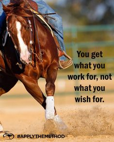 """""""Work until your idols become your rivals"""" horse quote Rodeo Quotes, Equine Quotes, Cowboy Quotes, Cowgirl Quote, Equestrian Quotes, Equestrian Problems, Western Quotes, Funny Horses, Cute Horses"""
