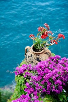 ***Italy - Amalfi cost   Flickr - Photo Sharing!