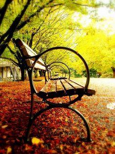 Postales de otoño… #