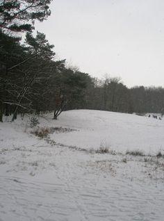 winter near Bilthoven