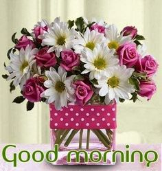 Good Morning Flowers Pictures - The Best Flowers Ideas Good Morning Flowers Pictures, Cute Good Morning Images, Good Morning Picture, Morning Pictures, Flower Pictures, Morning Pics, Good Morning Greetings, Good Morning Wishes, Happy Birthday Images