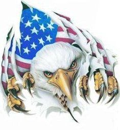 Things To Consider When You Go Camping American History, American Flag, Eagle Images, Eagle Drawing, Eagle Painting, Patriotic Tattoos, Patriotic Pictures, 12 Tribes Of Israel, Eagle Art