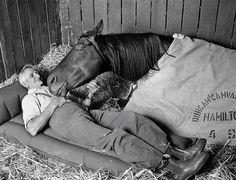 gefunden auf Facebook Ein Mann, sein Pferd und sein Hund wanderten…