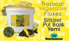 Tropical Vegetable Flakes Bitkisel Pul Balık Yemi http://www.turkiyeyemmerkezi.com/tropical-vegetable-flakes-100-gram