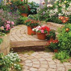 Are you looking to create a traditional pathway running through your garden? Design and create a lovely feature using these sandstone Autumn Blend Setts. Sun Plants, Patio Plants, Garden Ideas Budget Backyard, Sandstone Paving, Garden Paving, Cottage Garden Design, Garden Makeover, Paving Stones, Yard Landscaping