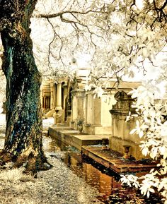 Metarie Cemetery, New Orleans by Paula Cravens