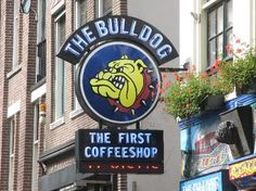 The Bulldog is an Amsterdam-based company that owns and operates a chain of cannabis coffee shops and a hotel in Canada: the merchandising brand name is the same as the company name. Henk de Vries began selling marijuana in 1970 at the Kralingen Music Festival, a pop festival in Kralingse Bos. In 1975 he converted his father's sex shop in Amsterdam's red-light district into The Bulldog coffee shop and began slowly expanding