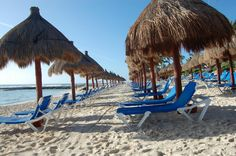 Grand Bahia Principe Coba - All-inclusive Resort Reviews, Deals - Riviera Maya/Akumal, Mexico - TripAdvisor
