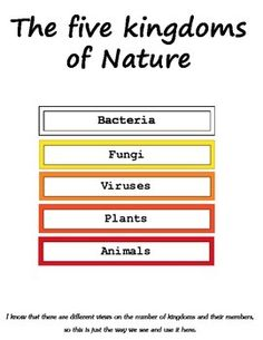 This printables are one of the first montessori biology materials that introduces your child to five nature kingdoms. Your child will learn that there are five kingdoms of nature - bacteria, fungi, viruses, plants and animals. He will look at their representatives.  Material helps the child to understand that there are more nature creatures than he thought and broadens his horizons. Material consists of 5 big cards and 5 name cards for each kingdom, 20 picture cards that show…