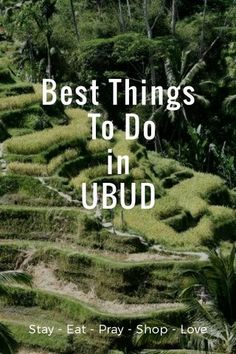 #Ubud #CityGuide Best things to do in Ubud #Bali from where to stay, eat, shop to what to do and where to go. #UbudItinerary #StellerPlaces   Check it out! My story is scheduled to be featured in the Places collection within the next 24 hours.