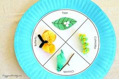 In this fun spring craft for kids, children will illustrate the butterfly life cycle on a paper plate. There's also a free printable to help get you started!