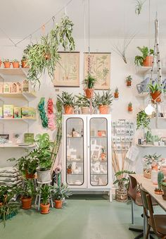 store selling modern greenhouse decor / sfgirlbybay