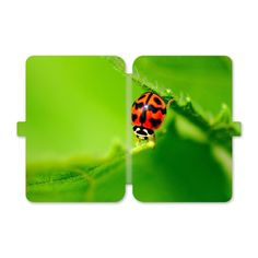 Presenting ladybug on a green leaf. [ Snugly Fit ] Designed for the Kindle 8 Durable PU case Full access to all buttons, controls and functions.