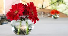 red gerber daisy centerpiece- simple and effective