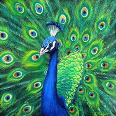 A beautiful peacock in oils on canvas. Description from fineartamerica.com. I searched for this on bing.com/images