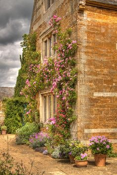 Terrace at Coton Manor, England  by Roantrum on flickr