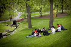Students sit in Wee Stinky Glen in spring. Photo by University Photography. After High School, Cornell University, First Day Of Spring, College Campus, Acre, Golf Courses, Dolores Park, Students, Dreams