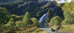 Powerscourt Waterfall - Enniskerry, Co. Wicklow This is Ireland's highest waterfall measuring It is a beautiful park at the foothills of the Wicklow Mountains. Ireland Homes, House Ireland, Cascade Water, Family Days Out, Beautiful Park, Largest Countries, Country Estate, Travel Memories, Waterfall