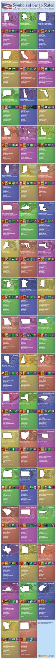 Symbols of the 50 United States Infographic by Cheatography http://www.cheatography.com/cheatography/cheat-sheets/symbols-of-the-50-united-states/ #cheatsheet #usa #states #geography