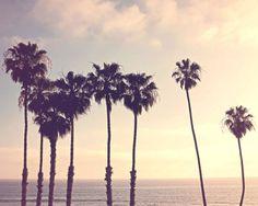 Palm Trees Photography Print Ocean Decor Beach Photo by HazyTone