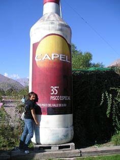 La Serena (pisco factory), Chile (2006)