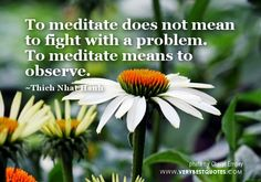 Thich Nhat Hanh Quotes, To meditate does not mean to fight with a problem