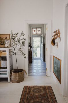 / sfgirlbybay indoor olive tree styled in woven basket in vintage modern home. The post friday finds. / sfgirlbybay appeared first on Welcome! Vintage Modern, Vintage Style Decor, Home Vintage, Modern Vintage Bedrooms, Vintage Room, Midcentury Modern, Indoor Olive Tree, Interior Design Minimalist, Modern Design