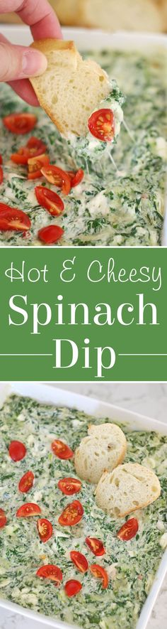 Warm, cheesy and delicious SPINACH DIP!