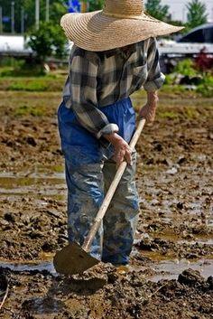 Grants for Women Farmers