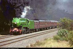 Net Photo: 3801 NSW Rail Transport Museam 38 class at Mangalore, Victoria, Australia by Ian Green Rail Transport, Mangalore, Rail Car, Train Pictures, Sight & Sound, Victoria Australia, Steam Engine, Steam Locomotive, Train Tracks