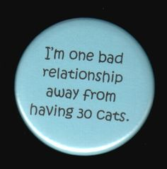 I'm one bad relationship away from having 30 cats by SwankSpecials, $3.00