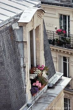 Paris windows | Magdalena Martin | via #BornToBeSocial, Pinterest Marketing | http://borntobesocial.com