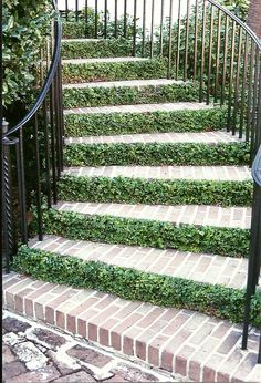 The greenery is absolutely unique on the staircase