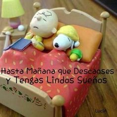 Healthy living at home sacramento california jobs opportunities Good Night Messages, Good Night Wishes, Good Night Quotes, Morning Messages, Good Morning Snoopy, Mafalda Quotes, Snoopy Pictures, Morning Thoughts, Alcohol Humor