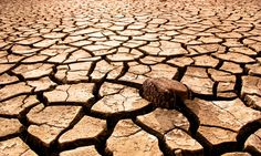 Photo about Cracked, parched land after a drought. Image of climate, drought, brake - 3534943