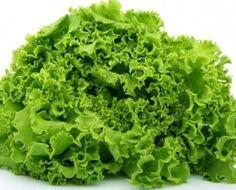 Как заготовить листовой салат на зиму