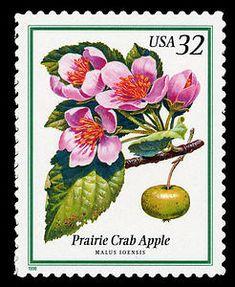 32c Prairie Crab Apple single, 1998