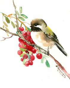 Chickadee and Berries one of a kind original watercolor painting bird art sage brown small original painting gift bird lover chickadee art by ORIGINALONLY on Etsy Watercolor Bird, Watercolor Animals, Watercolour Painting, Watercolor Artists, Watercolours, Bird Artwork, Wow Art, Animal Paintings, Bird Paintings